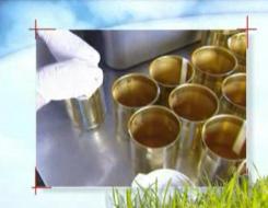 producteurs foie gras